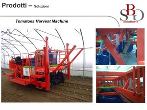 Tomatoes Harvest MAchine